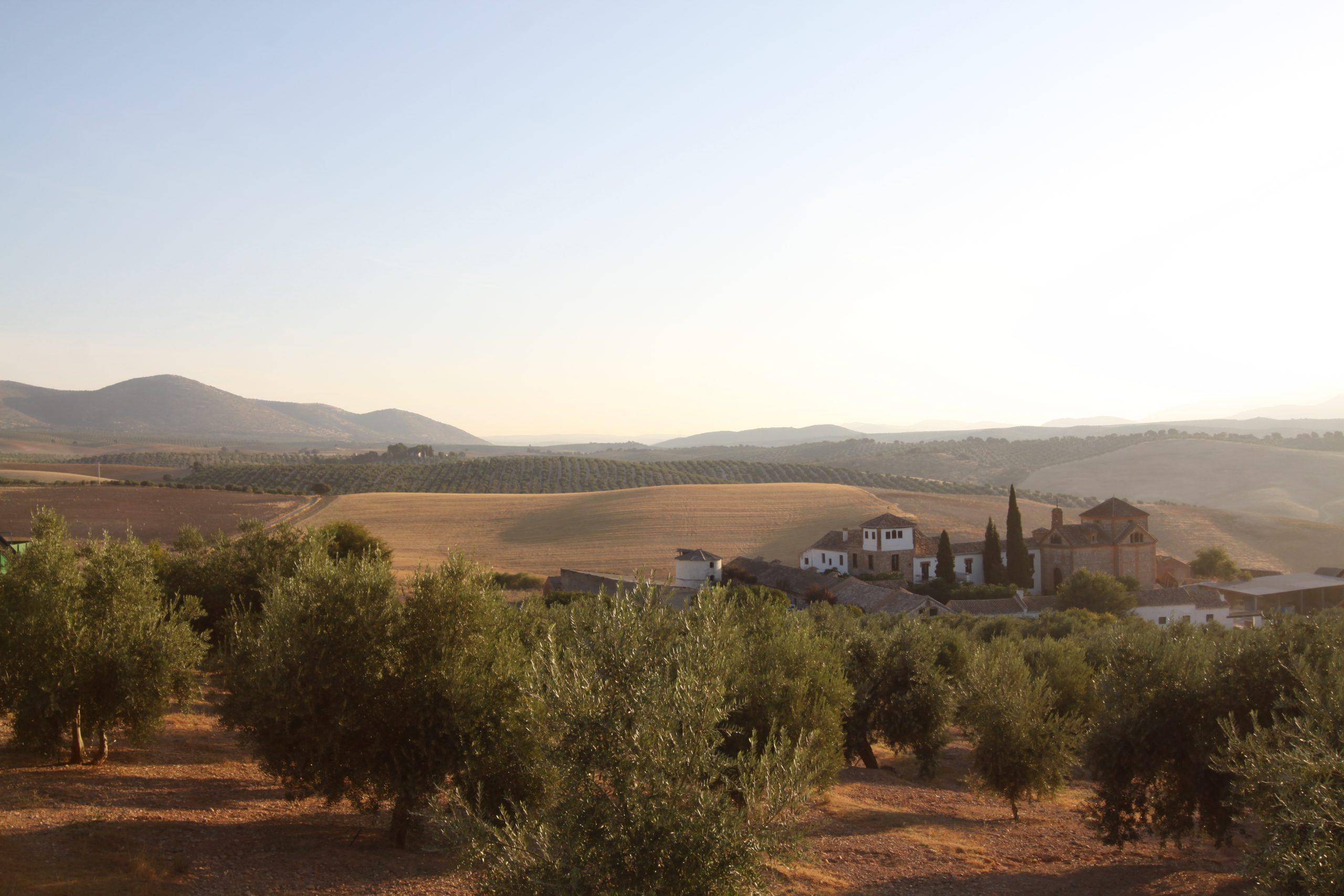 Albolote – Cortijo andaluz